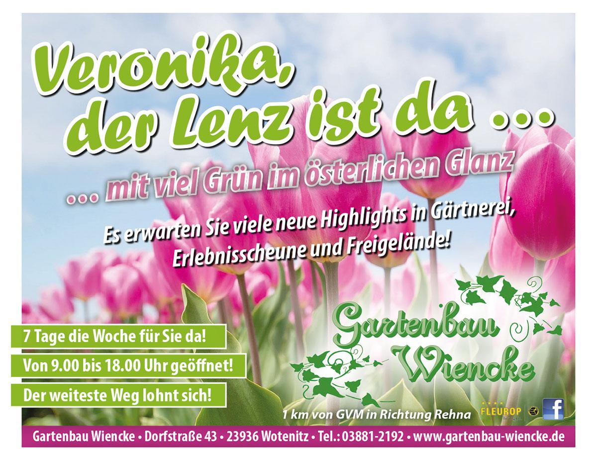 Frühlingserwachen auf dem Hof Wotenitz